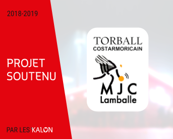 Miniature blog torball costarmoricain 🤾‍
